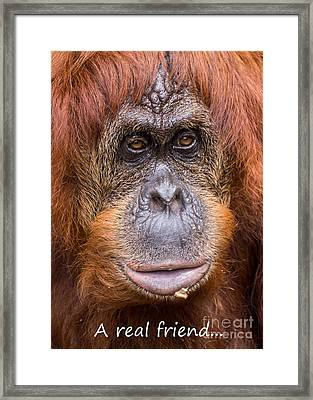 Friendship Card Framed Print by Edward Fielding