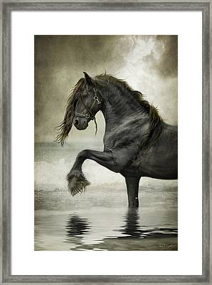 Friesian Surf  Framed Print by Fran J Scott