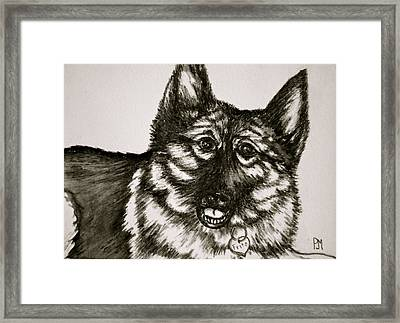Fritz Framed Print by Pete Maier