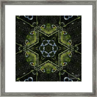 Frog Kaleidoscope Framed Print by Cindi Ressler