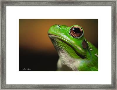 Frog Portrait Framed Print by Dirk Ercken