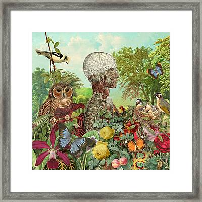 From The Garden Framed Print by Gary Grayson