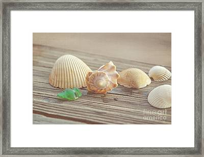 From The Sea Framed Print by Kay Pickens
