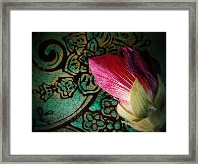 Frost Bit  Framed Print by Chris Berry