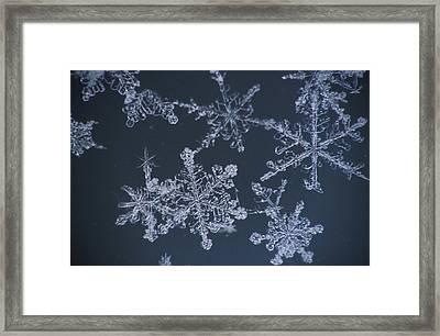 Frost Crystal On Glass Kodiak Isl Framed Print by Marion Owen