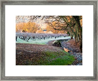 Frost In The Valley Framed Print by Bill Gallagher