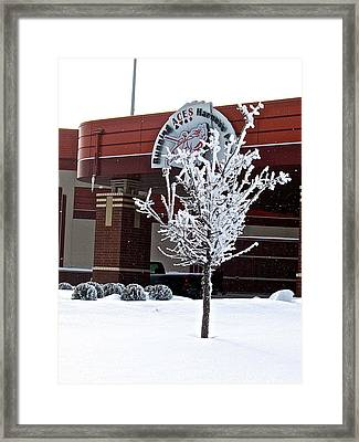 Frost On The Tree Framed Print by Dallas Teerlink