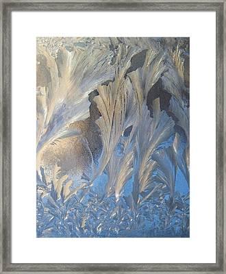 Frost On The Window Pane Framed Print by Joy Nichols