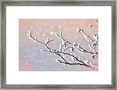 Frosty Branch Framed Print by Toppart Sweden