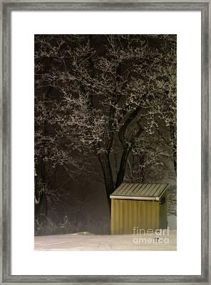 Frosty Foggy Night Framed Print by Lois Bryan