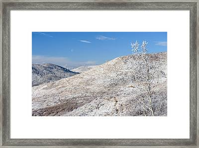 Frosty Foothills Framed Print by Heather Simonds