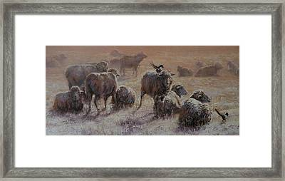 Frosty Morning Framed Print by Mia DeLode