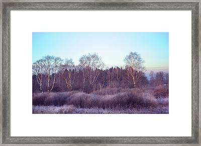 Frosty Purple Morning In Russia Framed Print by Jenny Rainbow