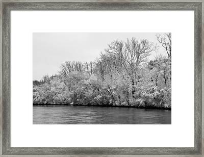 Frosty Trees Framed Print by Kathy Liebrum Bailey
