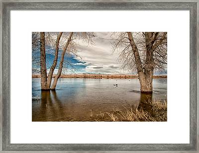 Frozen Farmers Pond Framed Print by Cat Connor
