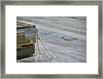 Frozen Framed Print by Karol Livote