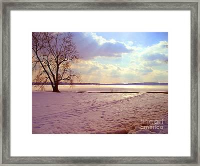 Frozen Lake II Framed Print by Silvie Kendall