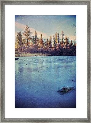 Frozen Framed Print by Laurie Search