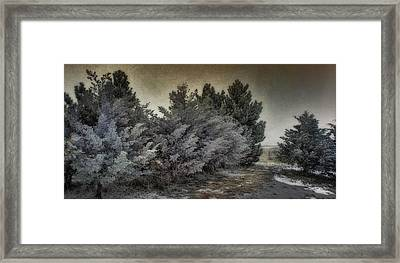 Frozen November Day Framed Print by Ellen Heaverlo