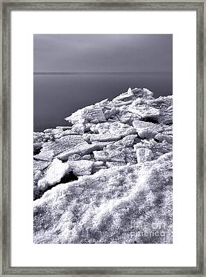 Frozen Shore Framed Print by Olivier Le Queinec