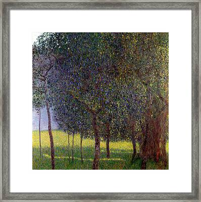 Fruit Trees Framed Print by Gustav Klimt