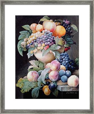 Fruits Framed Print by Pierre Joseph Redoute