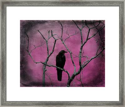 Fuchsia Framed Print by Gothicolors Donna Snyder