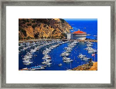 Full Bay Framed Print by Cheryl Young