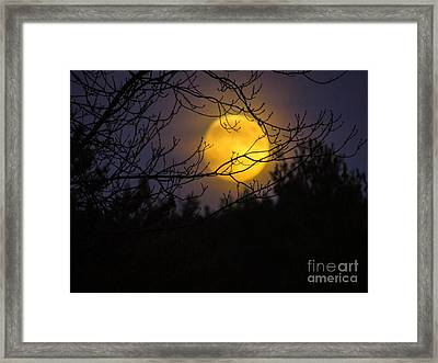 Full Beaver Moon Framed Print by Mim White