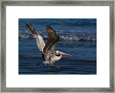 Full Flap Takeoff Framed Print by John Daly
