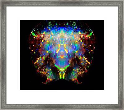 Full Spectrum Framed Print by Dan Sproul