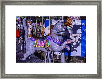 Fun Cat  Amusementt Ride Framed Print by Garry Gay