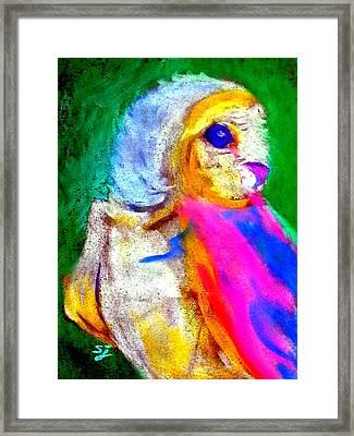 Funky Barn Owl Art Print Framed Print by Sue Jacobi
