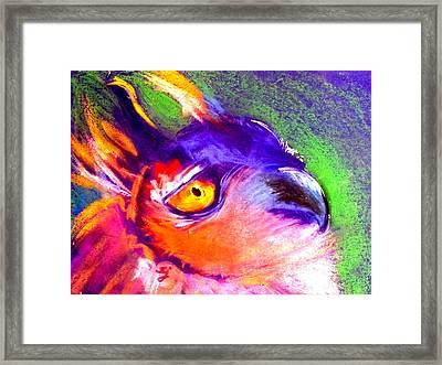 Funky European Eagle Owl Art Print Framed Print by Sue Jacobi