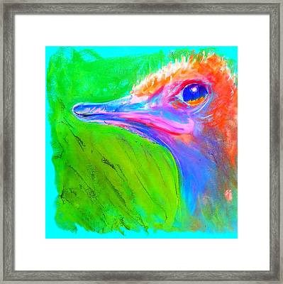 Funky Ostrich Profile Framed Print by Sue Jacobi