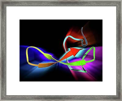 Funnel-web Spider Toxin Molecule Framed Print by Laguna Design
