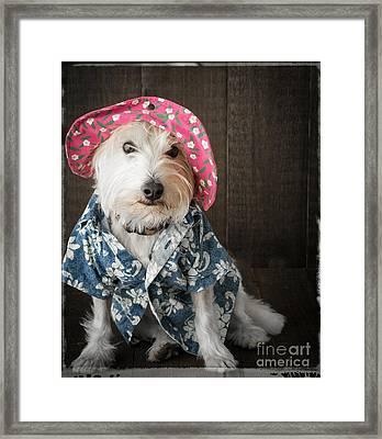 Funny Doggie Framed Print by Edward Fielding