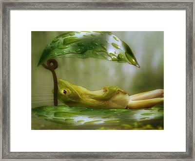 Funny Happy Frog Framed Print by Jack Zulli