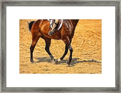 Gallop Framed Print by Karol Livote