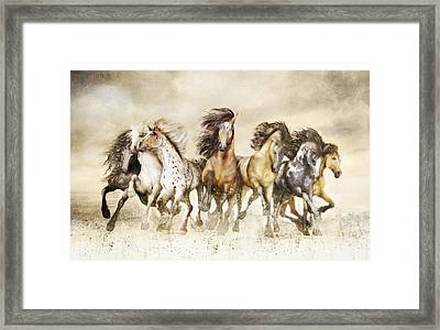 Galloping Horses Magnificent Seven Framed Print by Shanina Conway
