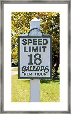 Gallops Per Hour Framed Print by Cynthia Guinn