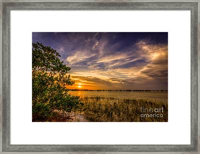 Gandy Lagoon Framed Print by Marvin Spates