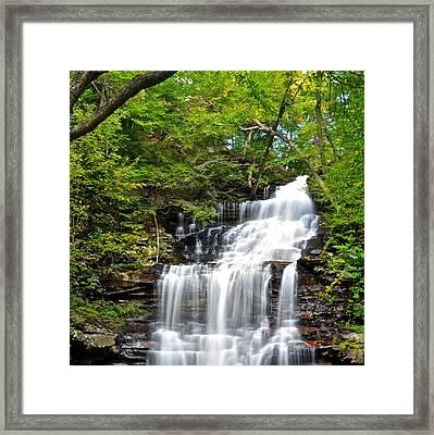 Ganoga Falls Ricketts Glen Framed Print by Frozen in Time Fine Art Photography