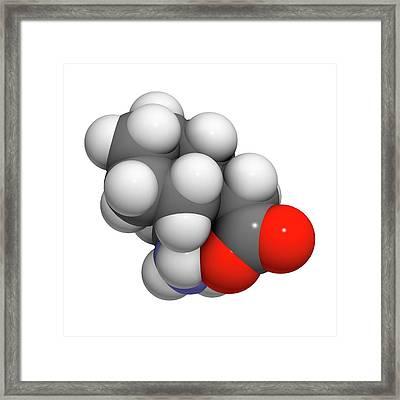 Gapapentin Drug Molecule Framed Print by Molekuul