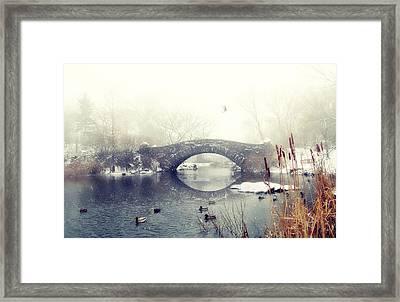 Gapstow Geese  Framed Print by Jessica Jenney