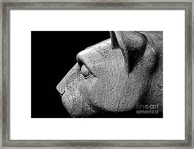 Garatti's Lion Framed Print by Tom Gari Gallery-Three-Photography
