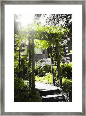 Garden Arbor In Sunlight Framed Print by Elena Elisseeva