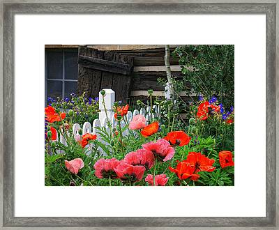 Garden At The Cabin Framed Print by Priscilla Burgers