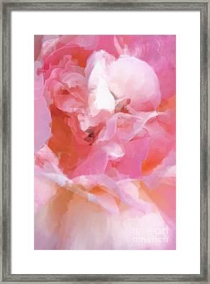 Garden Ballet Framed Print by Gwyn Newcombe
