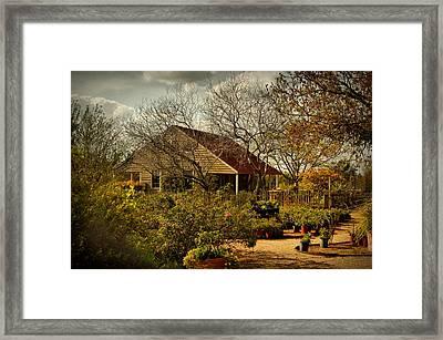 Garden Fantasy Framed Print by Linda Unger
